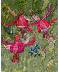 Garden Fuchsias