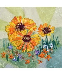 Heleniums and Geums